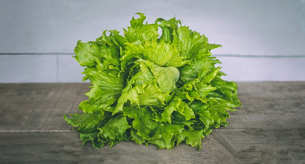 Icebery Lettuce