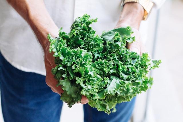 Keeping Lettuce Fresh